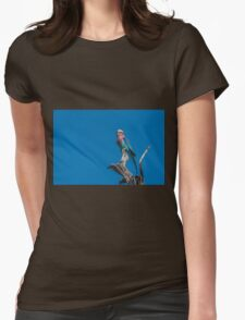 Lilac-breasted roller looking up from dead branch Womens Fitted T-Shirt