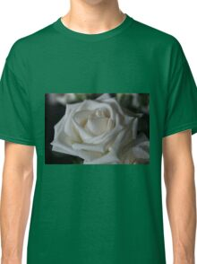 Gorgeous White Rose Classic T-Shirt