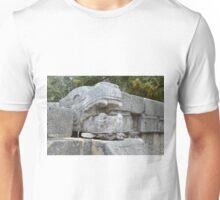 Lizard in Lizard Unisex T-Shirt