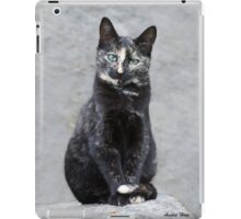 Tortoise shell lady iPad Case/Skin