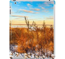 Illinois Sunset At Emiquon National Wildlife Refuge iPad Case/Skin