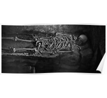 Skeleton In A Tomb Poster