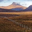 Scottish Moorland and Mountain by Steve