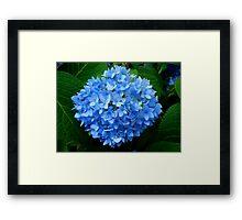 Ball of Blue Framed Print