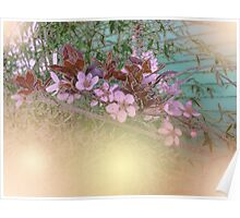 Blossoms Green House Poster