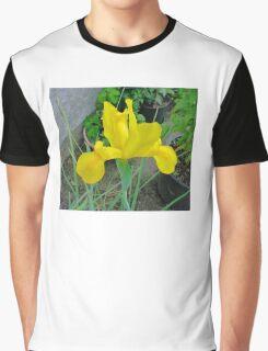 BEAUTIFUL LONE YELLOW IRIS Graphic T-Shirt