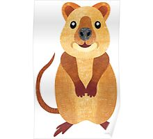 Q is for Quokka Poster