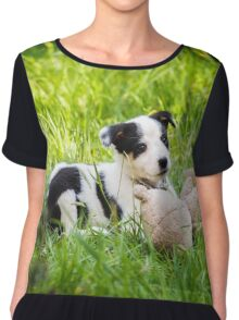Border Collie Puppy Chiffon Top