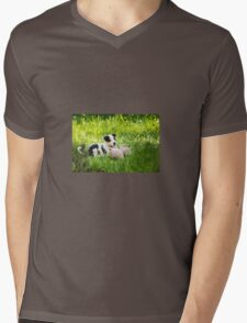 Border Collie Puppy Mens V-Neck T-Shirt