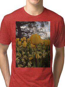 Yellow Tulips Tri-blend T-Shirt