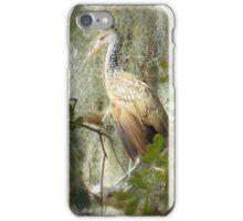 Limpkin Bird iPhone Case/Skin