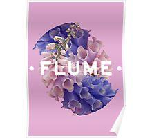 flume skin - full Poster