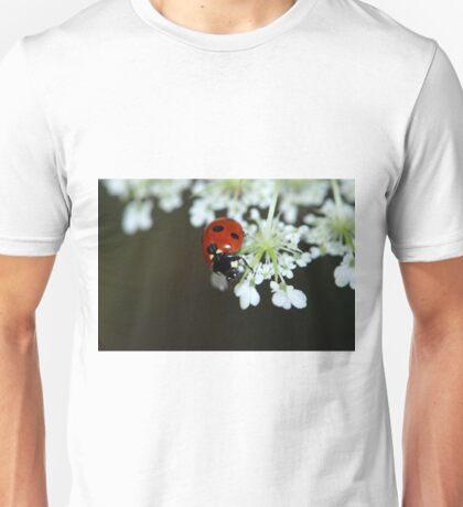 LadyBug LadyBird Unisex T-Shirt
