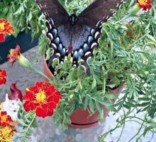 Butterfly on Marigolds Sticker