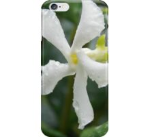 Jasmine Bloom iPhone Case/Skin