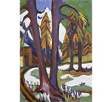 Ernst Ludwig Kirchner - Mountain-Early Spring With Larchen.  Kirchner - forest view. Photographic Print