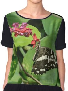 Checkered Lime Swallowtail Butterfly  Chiffon Top