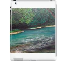 Pretty Appalachian stream landscape  iPad Case/Skin