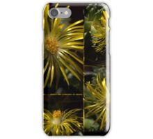 Faucaria Tuberclosa 24 hrs iPhone Case/Skin