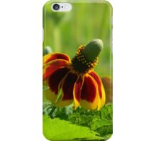 Mexican Hat iPhone Case/Skin