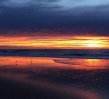Sunrise by Nicole Barnes