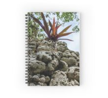 Bahama Burst Spiral Notebook