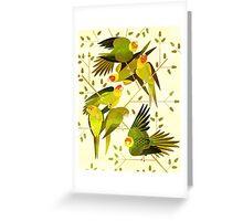 Carolina Parakeet Greeting Card