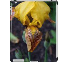 Dwarf Iris iPad Case/Skin