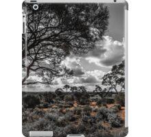 Arid iPad Case/Skin