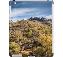 Arkaroola iPad Case/Skin