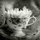 Tea Cup, Lace & Frangipanis by Evita