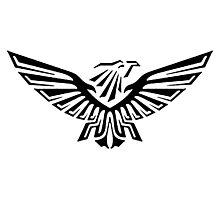 Warhammer 40k Black Eagle Photographic Print