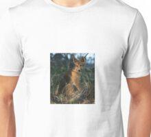 Dingo LOVE.... Unisex T-Shirt