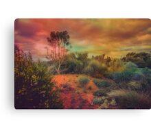 Arid Land Canvas Print