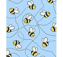 Bee Trails Photographic Print