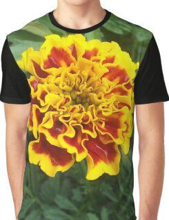 Sun Pop Graphic T-Shirt