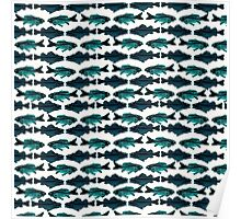 Fish (blue on white) Poster