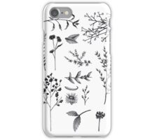 Botanic Garden  iPhone Case/Skin