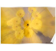 Yellow flower with zoom blur Poster