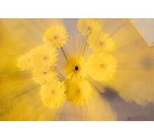 Yellow flower with zoom blur Photographic Print