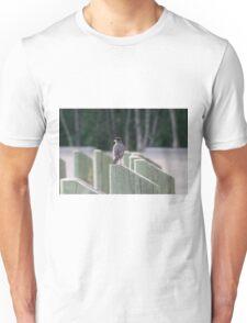 Robin sitting on a post Unisex T-Shirt