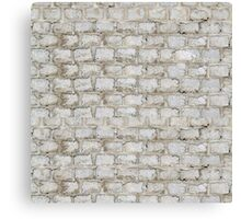 Brick blocks Canvas Print
