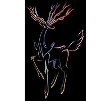 Xerneas - Justice Photographic Print