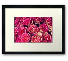 large bouquet of pink roses Framed Print
