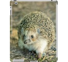 Young hedgehog in natural habitat iPad Case/Skin