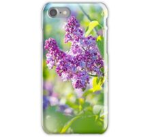 Green branch with spring lilac flowers iPhone Case/Skin