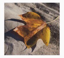 Tulip Tree Leaf - Shadow and Light Kids Tee