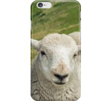 The Lamb Brothers iPhone Case/Skin
