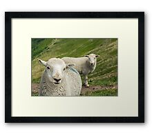 The Lamb Brothers Framed Print