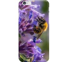 Bumblebee Collecting Nectar  iPhone Case/Skin